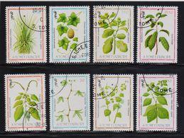 St. Tome 1983, Complete Set Medicinal Plants, Vfu. Cv 20 Euro - Sao Tome And Principe