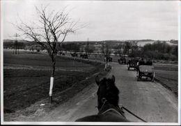 ! 2 Fotos 11,2 X 8,1 Cm, 2. Weltkrieg 1940, Saarland, Pferdewagen, Horses, Militaria - Weltkrieg 1939-45