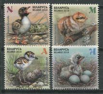 Belarus 2018 Bielorrusia / Birds MNH Vögel Aves Oiseaux / Cu9407  18 - Vogels