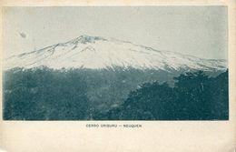 36603 Argentina,stationery Card  5c. 1903,showing The Patagonia Mountain Cerro Uriburu Neuquen - Géologie