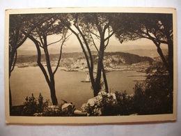 Carte Postale Nice (06) Vue Entre Les Pins  (Petit Format Noir Et Blanc Non Circulée) - Nice