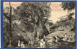 CPA Guinée Type Ethnic Afrique Noire Non Circulé Chemin De Fer - Guinée Française