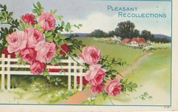 Pleasant Recollections - Greetings From...