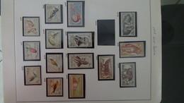 Collection De Timbres Tchecoslovaquie ** N° 1037 à 1613  . Voir Commentaires - Sammlungen (im Alben)