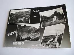 Trento - Saluti Da Pieve Tesino M. 882 - Trento