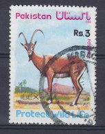 Pakistan 1976 Mi. 414     3 R Geschützte Wildlebende Tiere Steinbock - Pakistán