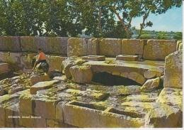 Hebron Alonei Mahreh (recto Verso) - Israel
