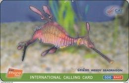 Thailand Phonecard PhoneNet Thaicard Kat. 4821 Fisch Fish Seepferdchen Seahorse - Fish