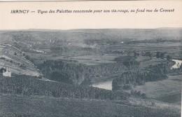 7X - 89 - Irancy - Yonne - Vigne Des Palottes Renomée Pour Son Vin Rouge, Au Fond Vue De Cravant - France