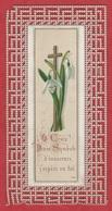 Image Pieuse - -  SANTINO - Holly Card - Souvenir - Devotion Images