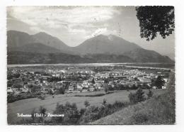 TOLMEZZO - PANORAMA VIAGGIATA FG - Udine