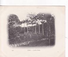LIMA. JARDIN PUBLIC. PERU. CIRCA 1890's- BLEUP - Peru
