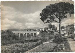X3716 Isernia - Ponte Cardarelli - Panorama / Non Viaggiata - Isernia