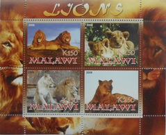 Malawi 2008 M/S Cinderella Issue Stamps Lions Wild Big Cats Of Prey Fauna Animals Nature Animal Lion Mammals MNH Perf - Malawi (1964-...)