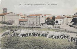 Canet-Village (Pyrénées-Orientales) - Vue D'ensemble, Troupeau De Moutons - Carte Colorisée N° 75 Non Circulée - Canet En Roussillon