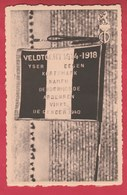 Vielsalm - 3e Chasseurs Ardennais - Etendard / Vaandel ( Voir Verso ) - Regimenten