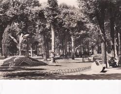 ROANNE  - Dépt 42 - Les Promenades - Roanne