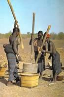 Afrique > BURKINA FASO  Yatenga Travail Collectif  (nue Seins Nus Nu ) *PRIX FIXE - Burkina Faso