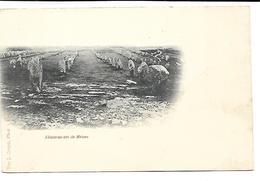 DOLMEN - Les Alignements De Ménec - Dolmen & Menhirs