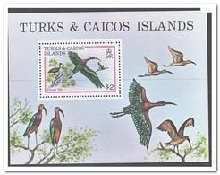 Turks & Caicos Eilanden 1980, Postfris MNH, Birds - Turks- En Caicoseilanden