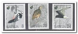 Letland 1995, Postfris MNH, Birds - Letland