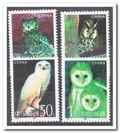 China 1995, Postfris MNH, Birds, Owls - Ongebruikt