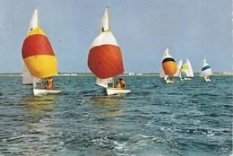 PORT  BARCARES ,,,,LECON DE VOILE ,,,,, 1972 ,,,,,TBE - Port Barcares