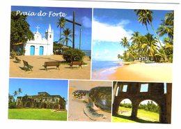 Amérique - Brésil - 2 Cartes - Bahia Praia Do Forte  E Ruinas Do Castelo Garcia D'Avila - Tortue - Brésil