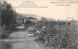 CPA -  Belgique, NAMUR * Au Robinson * Restaurant Félix Depry - Roland * La Plante Namur - Namur