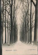 Melsbroeck Dreve - Other