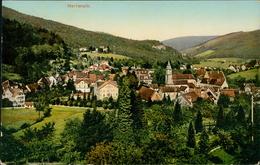AK Bad Herrenalb, Teilansicht, O 1910 (31013) - Bad Herrenalb