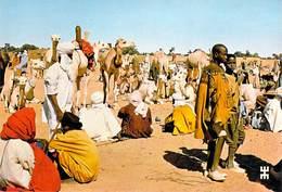 Afrique- BURKINA FASO  En Pays LIPTAKO TASSAMAKAT Province De Oudalan En Passant Par Le Marché  *PRIX FIXE - Burkina Faso