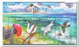 Maldiven 2015, Postfris MNH, Birds - Maldiven (1965-...)