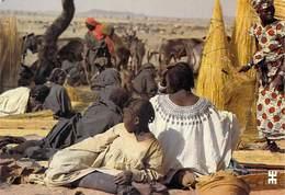 Afrique- BURKINA FASO  MARKOYE Province De Oudalan Coin De La Paille Sur Le Marché  *PRIX FIXE - Burkina Faso