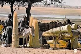 Afrique- BURKINA FASO  MARKOYE En Pays Liptako Arrivée De Bella Sur Le Marché (paille)  *PRIX FIXE - Burkina Faso