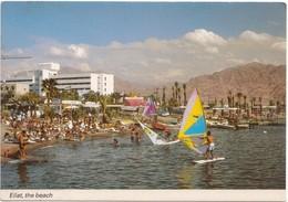 Israel, Eilat, The Beach, Unused Postcard [21648] - Israel