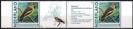 MDB MNL-BK1-074 MINT ¤ NETHERLANDS 2013 SHEET ¤ - OISEAUX - BIRDS OF THE WORLD - PAJAROS - VOGELS - VÖGEL - - Songbirds & Tree Dwellers