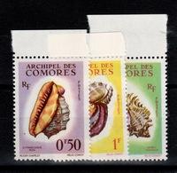 Comores - YV 19 / 20 /21 N** Cote 6,50 Eur - Unused Stamps