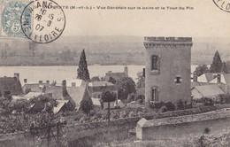 LA POINTE - Vue Générale Sur La Loire Et La Tour Du Pin - Other Municipalities