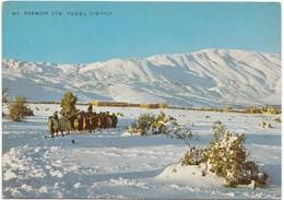 Mt. Hermon, Golan Heights, Unused Postcard [21655] - Israel