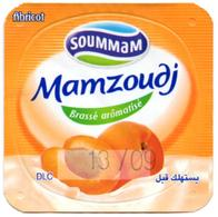 "Opercule Cover Yaourt Yogurt "" Soummam "" MAMZOUDJ Abricot Apricot Yoghurt Yoghourt Yahourt Yogourt - Opercules De Lait"