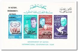 Qatar 1966, Postfris MNH, 20 Years UNO - Qatar