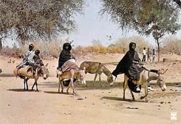 Afrique-BURKINA FASO En Pays LIPTAKO Femmes Bella Sur Le Chemin Du Marché *PRIX FIXE - Burkina Faso