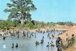 Afrique-BURKINA FASO SEROSSARASSO Province De Houet Pêche Collective *PRIX FIXE - Burkina Faso