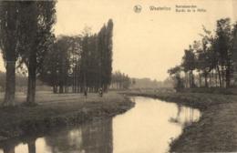 BELGIQUE - ANVERS - WESTERLOO - WESTERLO - Bords De La Nèthe. - Netheboorden. - Westerlo