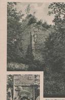 Winterstein - Ruine V. Wangenheim - Ca. 1925 - Gotha