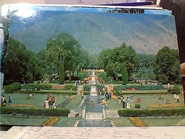 INDIA - KASHMIR  NISHAT GARDEJN SRINAGAR  VB1975  GU3009 - India