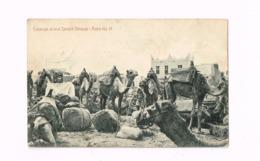 Caravan At Rest Sheikh Othman. Aden.Expédié à Anvers (Belgique) - Yemen