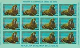 Guinea Ecuatorial Nº Michel A1242 En Hoja De 12 Sellos SIN DENTAR - Equatorial Guinea