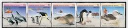 Australia/Australie (Territorio Antartico): Fauna Antartica, Antarctic Fauna, La Faune De L'Antarctique - Fauna Antartica